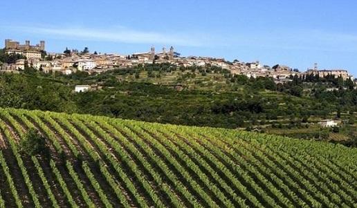 Montalcino 1