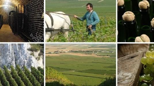 Agrapart e la Cuvée Minéral da vecchie vigne