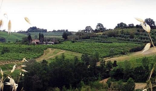 Agricola Tamburini Emanuela paesaggio