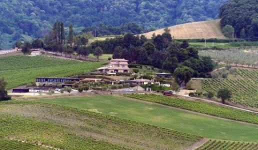 altarocca wine resort cantina vini umbria panorama albaco