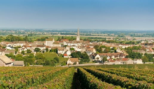 Borgogna Meursault