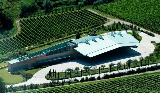 Campodelsole cantina vini emilia romagna panoramica san pascasio romagna pagadebit vino bianco