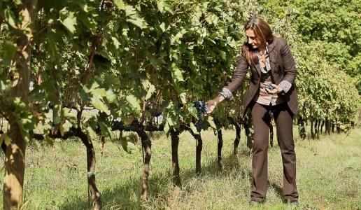 Caterina Dei cantina vini toscana