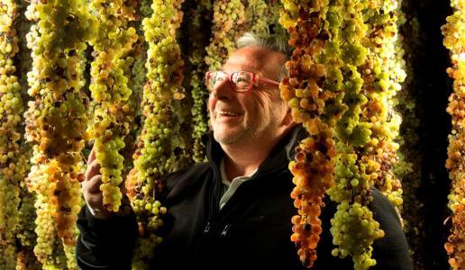 fausto maculan cantina vini veneto acini nobili vino passito