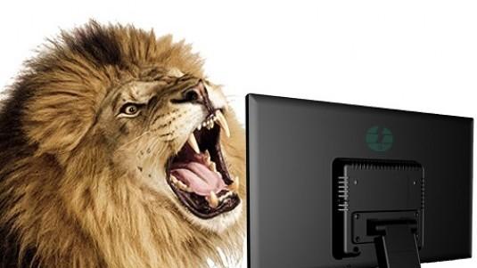 I leoni della tastiera