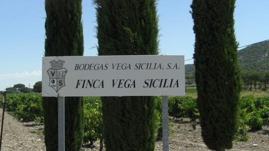 Il Signore di Spagna: Vega Sicilia (2)