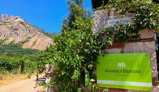 Masseria Frattasi cantina vini Campania