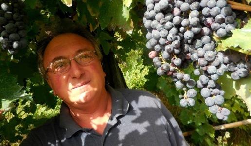 michele perillo cantina vini campania Taurasi riserva 2008