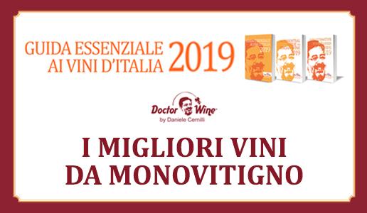 I migliori vini da monovitigno 2019
