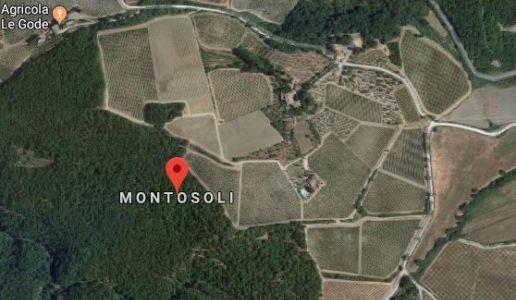 Montosoli, anima nordica e raffinata di Montalcino