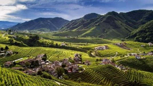 Prosecco Hills: rete d'impresa enoturistica - Cartizze