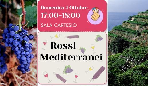 Seminario Rossi Mediterranei DoctorWine