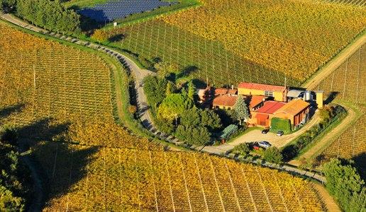 tre monti cantina vini emilia romagna panorama vigne campo di mezzo sangiovese superiore 2016