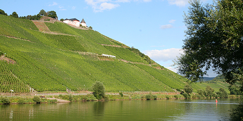 Sweet Wines (7): Germany, Spätlese and Auslese