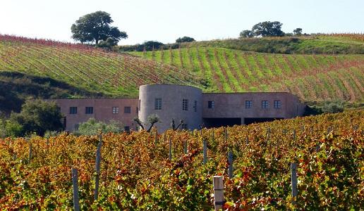 gabbas cantina vini lillovè cannonau di sardegna vino rosso vigneti
