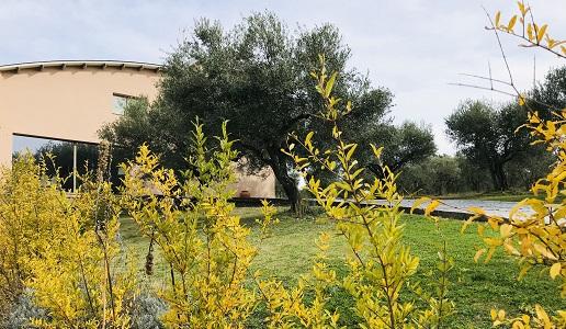 Cantine Ciani irpiania Campania panorama