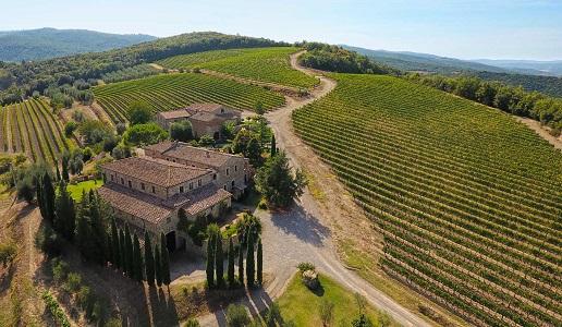 Capanna Montalcino Cantina vini Toscana Vigneti panorama