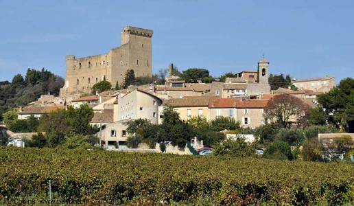 Chateauneuf du Pape 2015: un'annata tutta da scoprire