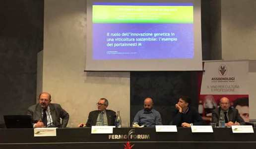 convegno viticoltura sostenibile realtà e futuro tipicità fermo