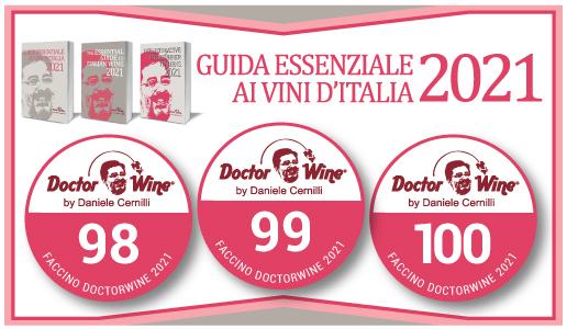 Faccino DoctorWine 2021 - 98/99/100