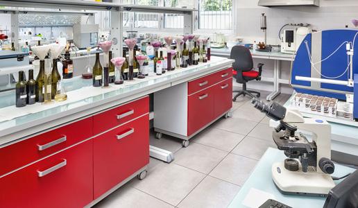 Problema acetaldeide lavoratorio analisi vino firmato doctorwine editoriale daniele cernilli