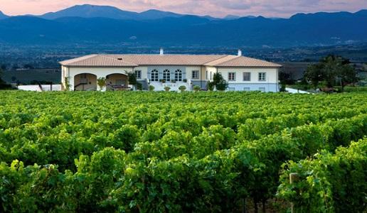 lungarotti torgiano rosso rubersco vigna monticchio riserva cantina vini umbria panorama vigne