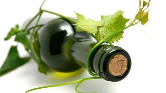 il vino naturale non esiste editoriale firmato DoctorWine daniele cernilli