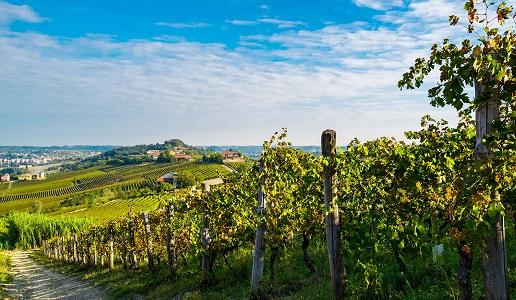 territorio Nizza Monferrato
