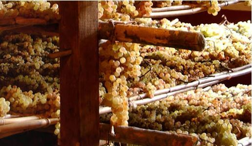 vin santo uve sui graticci