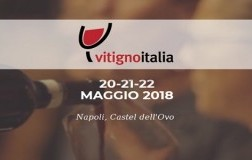 Vitigno Italia 2018 Napoli Castel dell'Ovo