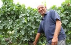 Antonio Camillo, il ciliegiolo nel cuore