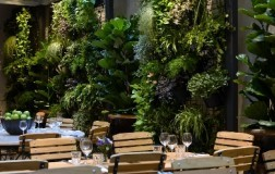 Aperta a Roma l'Hosteria del Mercato, 100% naturale