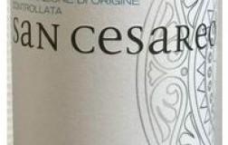 Claudio Morelli Bianchello del Metauro San Cesareo vino bianco Marche