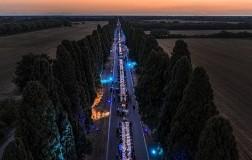 Bolgheri DiVino cena sul viale dei cipressi tramonto