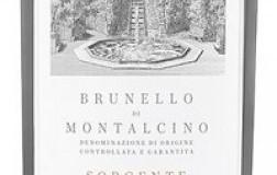 Podere Salicutti Brunello di Montalcino Sorgente 2015