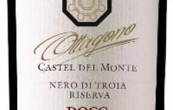 Torrevento Castel del Monte Nero di Troia Ottagono Riserva 2015