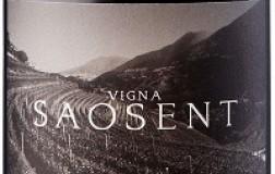 Cembra Cantina di Montagna Trentino Pinot Nero Vigna Saosent 2016