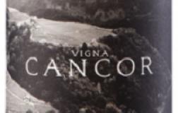 Cembre Cantina di Montagna Riesling Vigna Cancor 2017