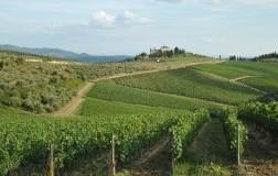 Paesaggio del Chianti Classico