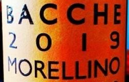 Col di Bacche Morellino di Scansano 2019