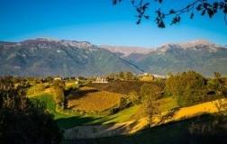 Cominium azienda vinicola  vigneti Val Comino Lazio