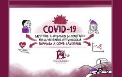 Vademecum per aziende vinicole Covid-19 - Le Donne della Vite