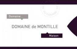 Domaine-De-Montille.jpg