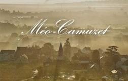 Domaine-Meo-Camuzet.jpg