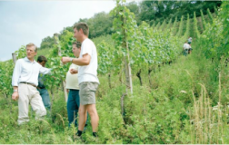 Due vini, una firma aziendale