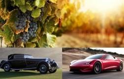 Clima e viticoltura sostenibile firmato doctorwine editoriale daniele cernilli