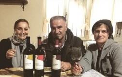 La bellezza dei vini di Boccella