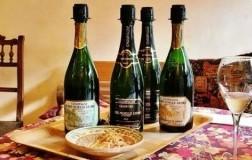 Marie Noelle Ledru Champagne e Abbinamenti