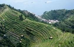 27 e 28 agosto al via il 28° Mondial des vins Extrêmes
