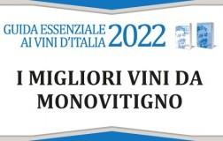 Monovitigni 2022